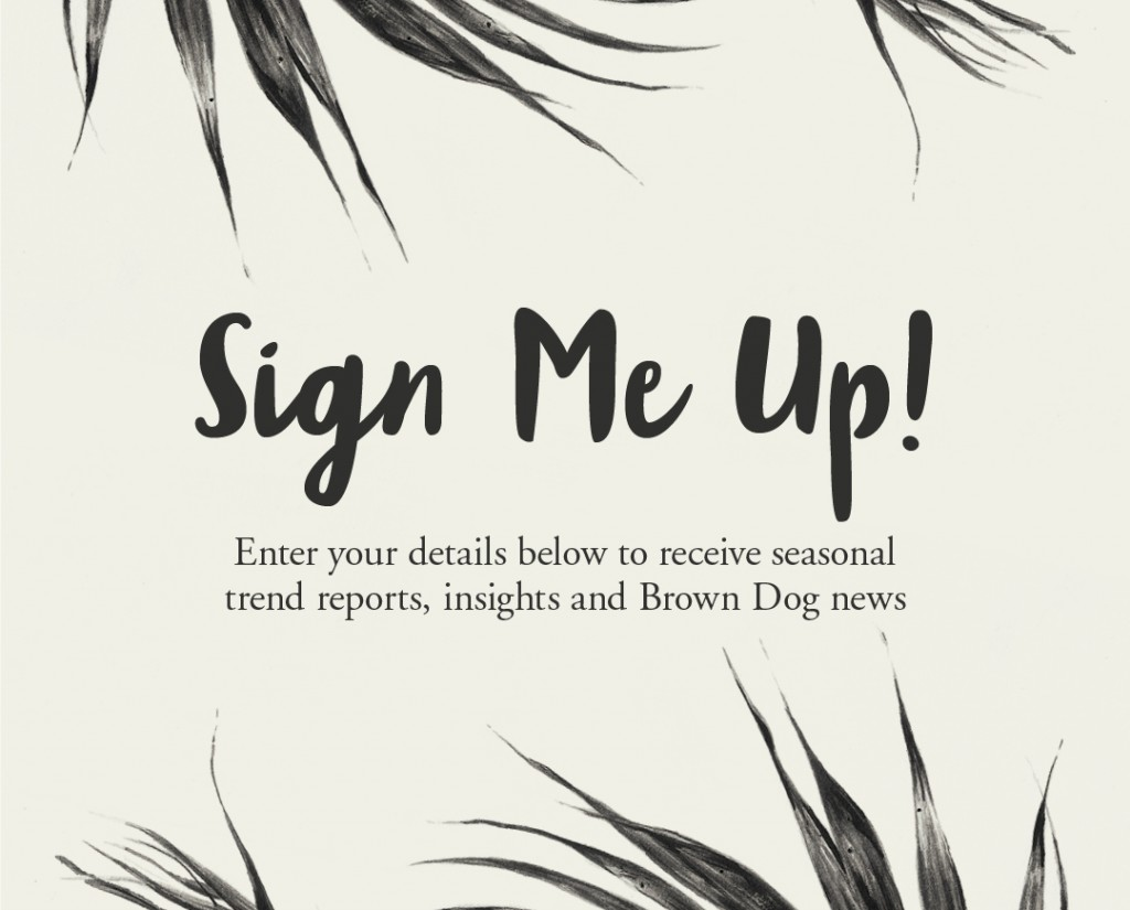 Sign Up Form graphic