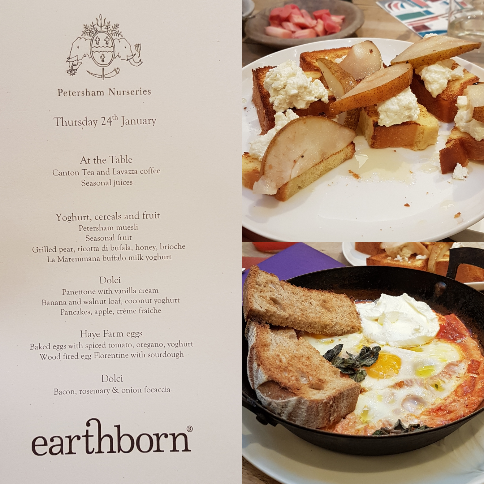 Earthborn Colour Launch at Petersham Nurseries